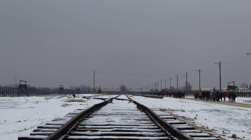"""In viaggio con """"Il Treno della Memoria"""" per non dimenticare …"""