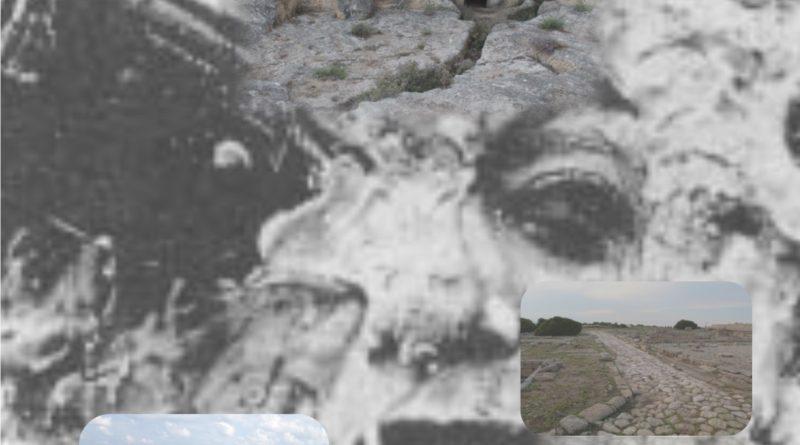 Dillo alla luna … Passeggiata lungo la costa tra storia, natura e poesia