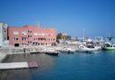 Delfino morto rinvenuto nel porto di Monopoli